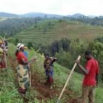 Abahinzi mu Rwanda bararushaho gukena!