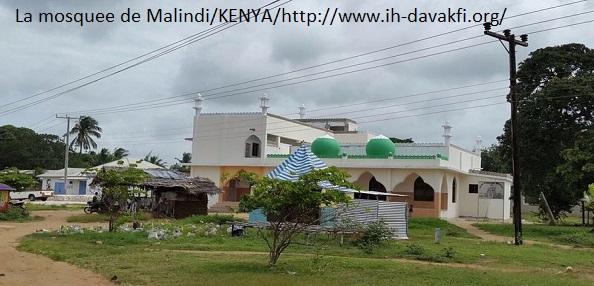 mosquee de malindi-kenya