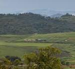 photo http://www.gishwati-mukura.com/