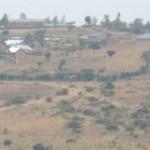 Mu Rwanda akarengane k'abahinzi : baratemerwa amasaka ateze bakamburwa amasambu ngo abe urwuri rw'inka